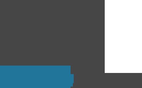 Actualisiere Wordpress oder schalte die automatische Updates aus